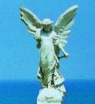 angel_crop